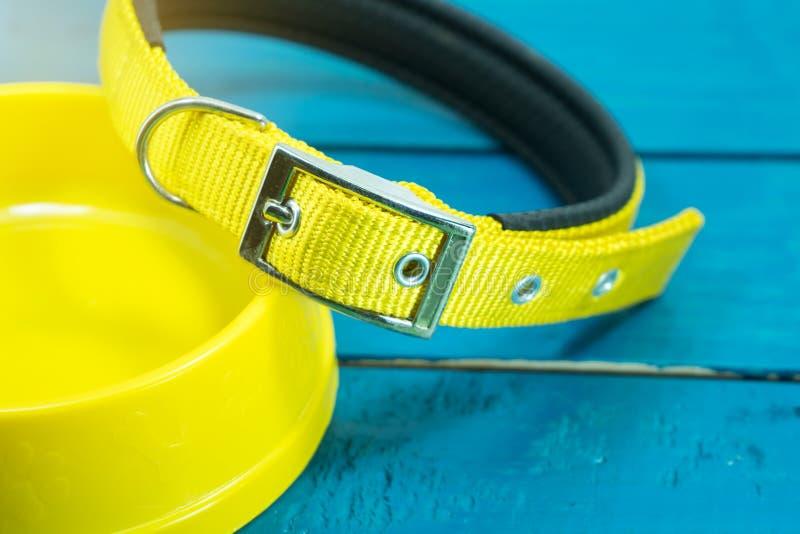 宠爱衣领和碗在木背景的黄色 免版税库存照片