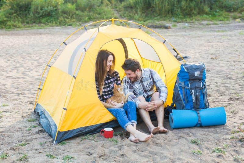 宠物、夏天旅游业和自然概念-坐与猫的年轻夫妇在帐篷附近 免版税库存图片