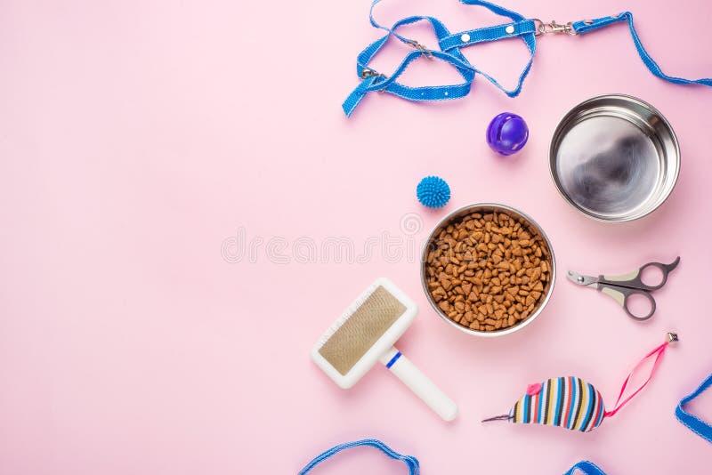 宠物、猫、猫生活平的位置食物和辅助部件,与设计的空间,在桃红色背景 图库摄影