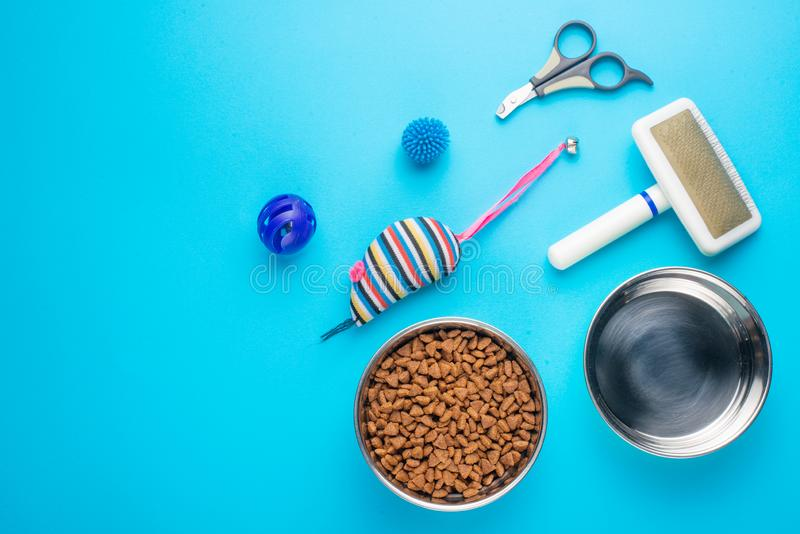 宠物、猫、猫生活平的位置食物和辅助部件,与设计的空间,在蓝色背景 免版税库存图片