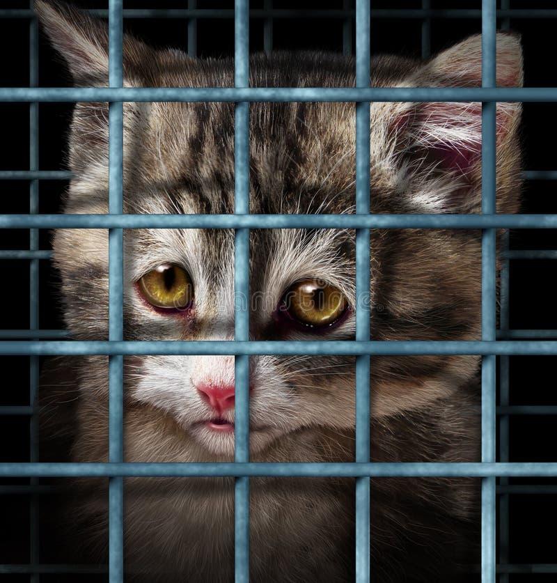 宠物收养 向量例证