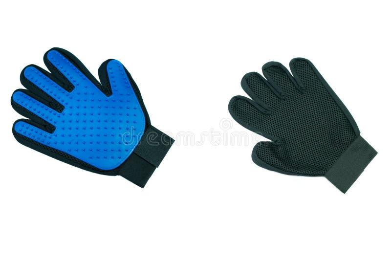宠物浴的蓝色橡胶手套在白色 免版税库存图片