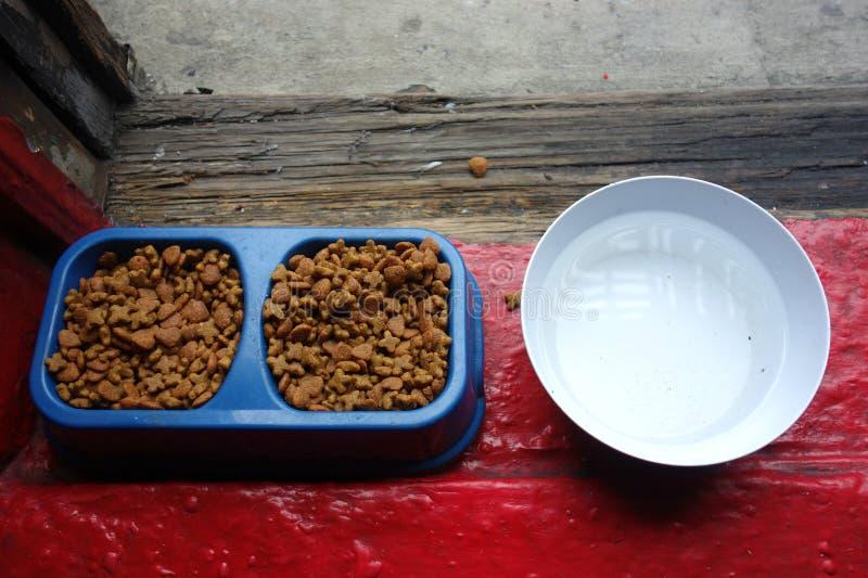 宠物食品和水 免版税库存图片