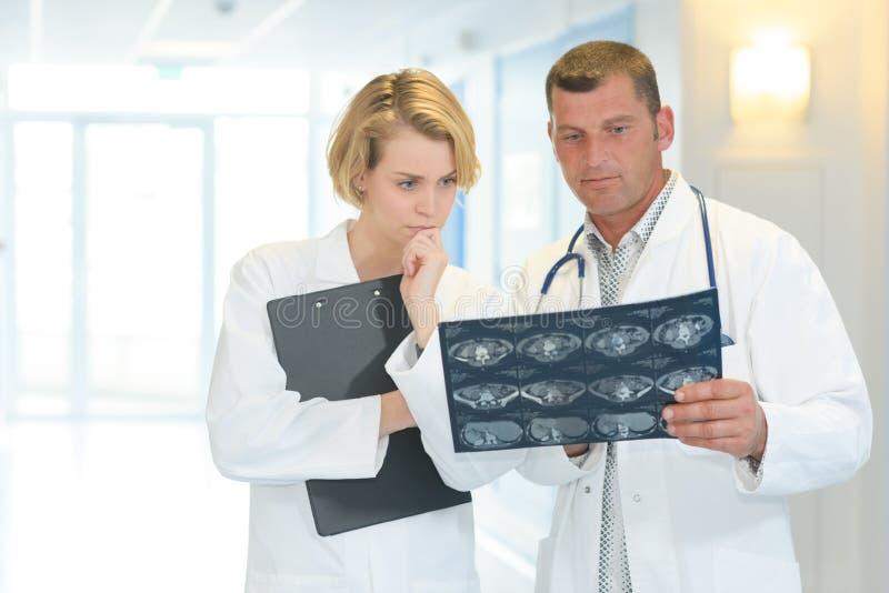 审查放射学结果 库存图片