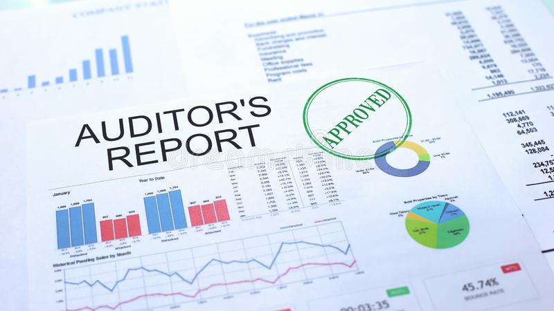 审计员报告批准,在公文盖印的封印,企业项目 向量例证