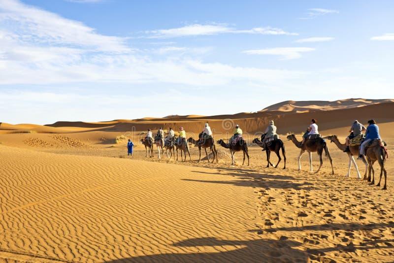 圖片 包括有 室外, 駱駝, 阿拉伯人, 敵意, 孤獨 - 38126162圖片