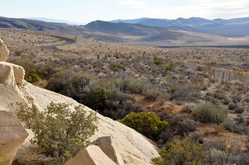 审阅沙漠的遥远的路 免版税库存图片