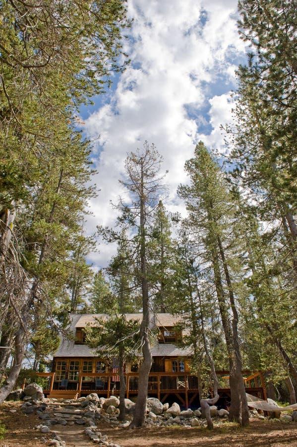 客舱森林风景木 库存照片