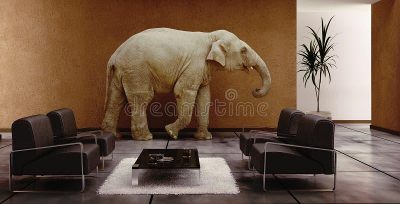 室内大象 库存图片