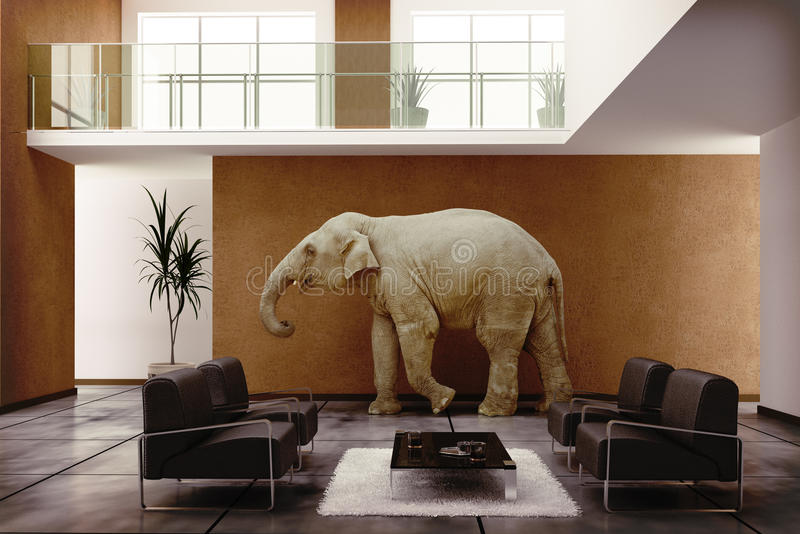 室内大象 皇族释放例证