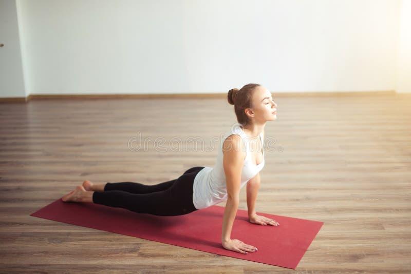 室内女子实践的瑜伽 在类的美丽的女孩实践眼镜蛇asana 免版税图库摄影
