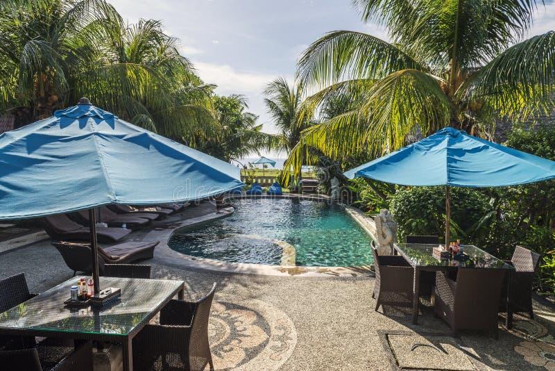 室内小游泳池看法在旅馆大厅的在热带手段 免版税库存照片