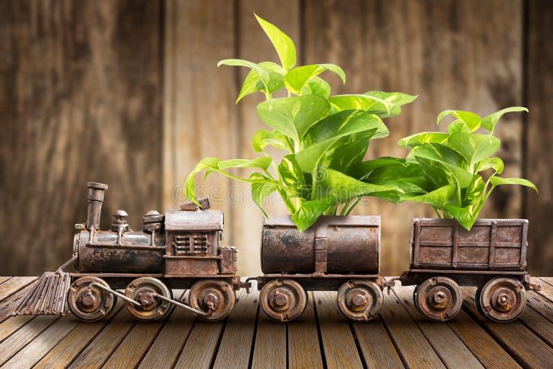 室内植物和火车 库存照片
