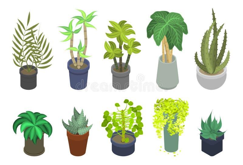 室内植物象集合,等量样式 库存例证
