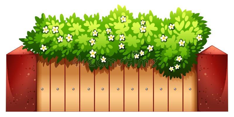 室内植物 向量例证