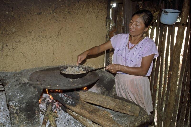 室内烹调危地马拉妇女画象  库存图片