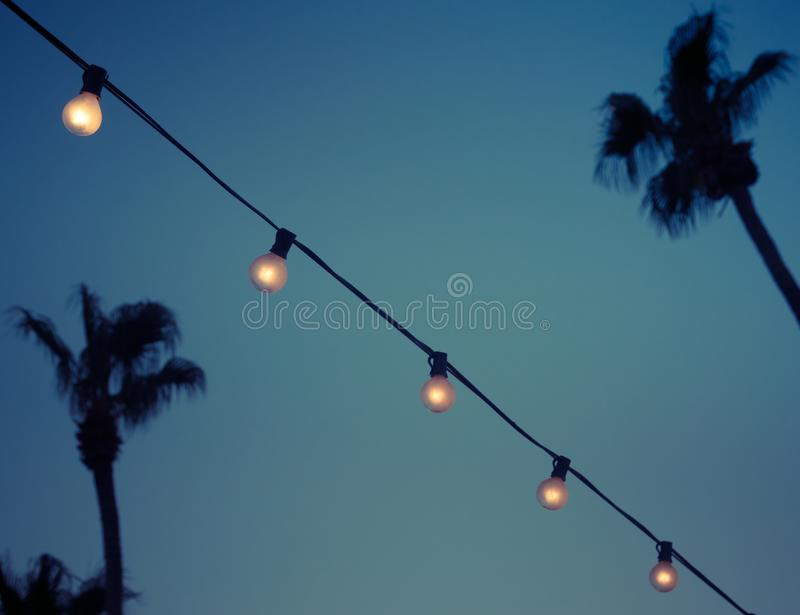室外串诗歌选电灯泡在晚上 库存照片