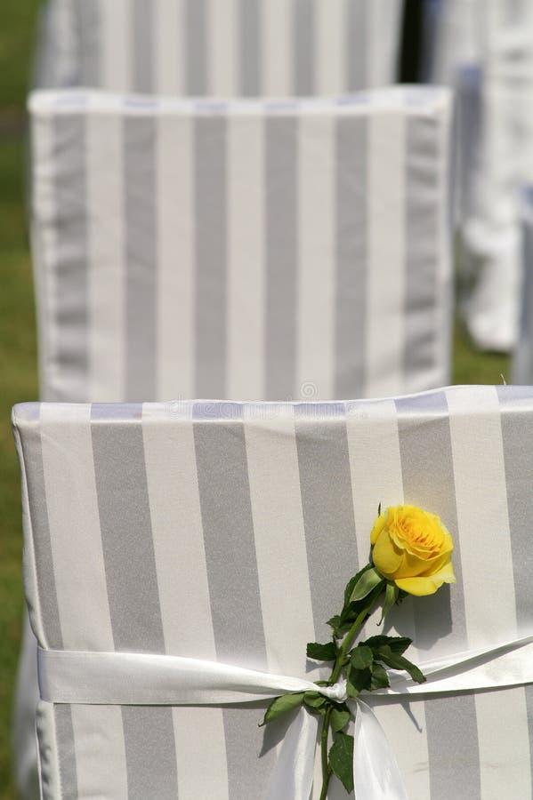 室外场面婚礼 库存图片