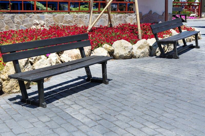 室外木公园的benchs 库存图片