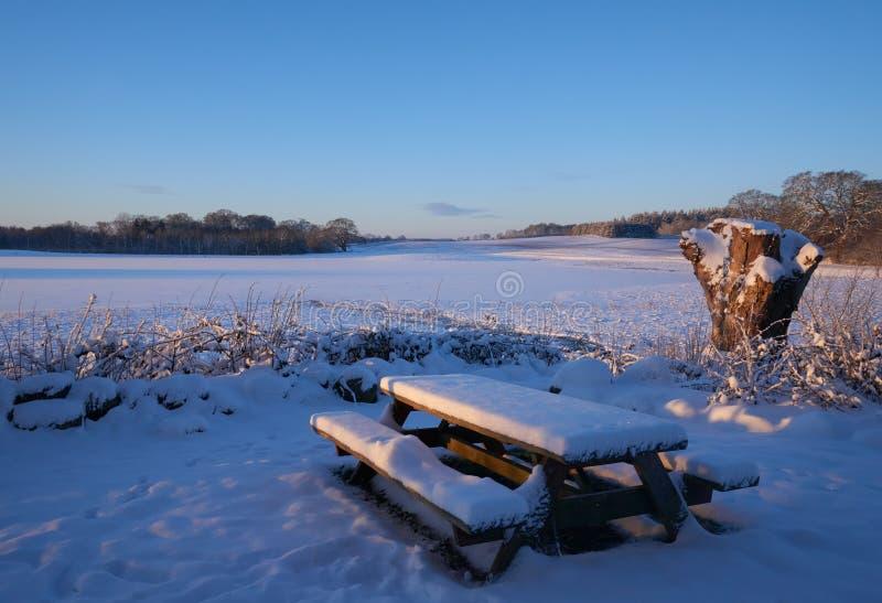 室外桌和长凳在雪设置了 库存图片