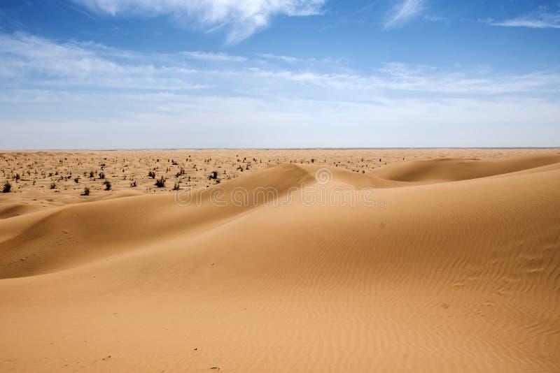 室外沙子样式沙丘阿曼老沙漠磨擦Al khali 免版税图库摄影