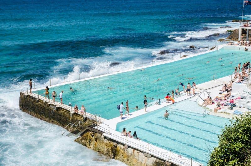 室外游泳池有在游泳俱乐部的Bondi冰山的美好的海景 库存照片