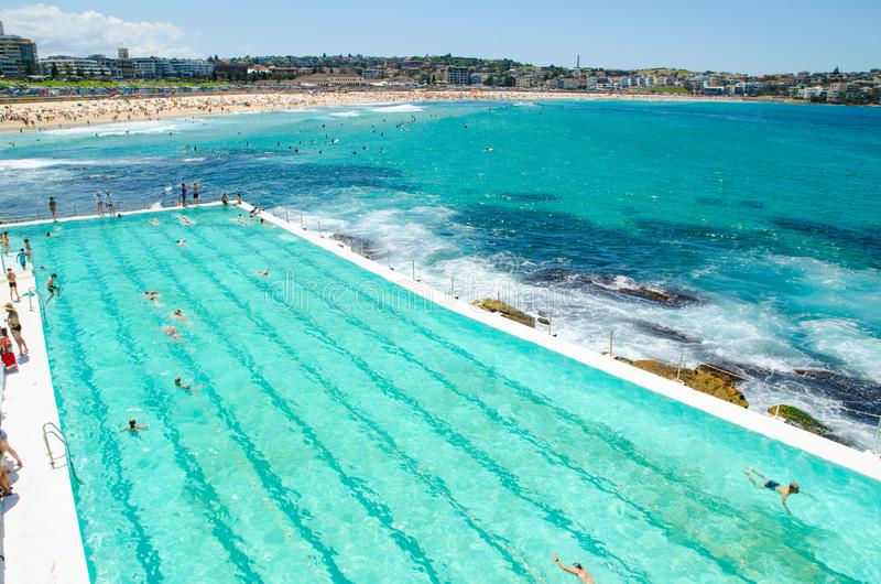 室外游泳池有在游泳俱乐部的Bondi冰山的美好的海景 免版税库存照片