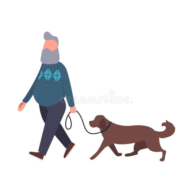 室外狗步行者走的宠物 与拉布拉多的资深漫步 动画片平的传染媒介字符 宠物走的服务概念 向量例证