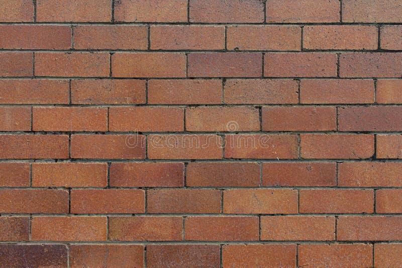 室外纹理砖墙红色的背景 免版税图库摄影