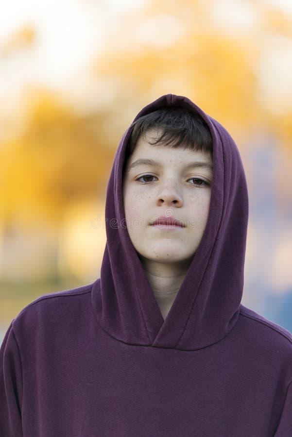 室外英俊的男孩画象 敞篷的青少年的男孩在公园自然 库存图片