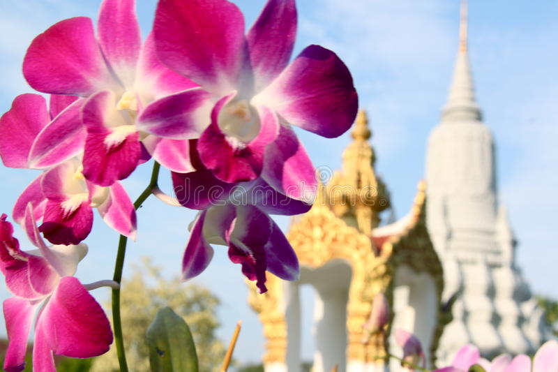 宫殿皇家penh的phnom 图库摄影