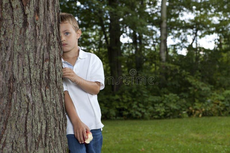 害羞的男孩 库存图片