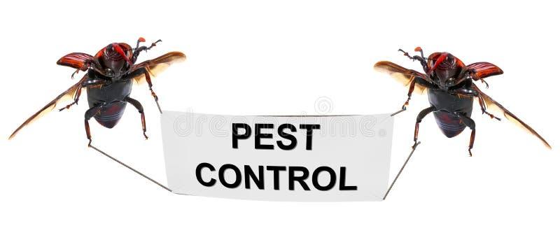 害虫控制 库存照片