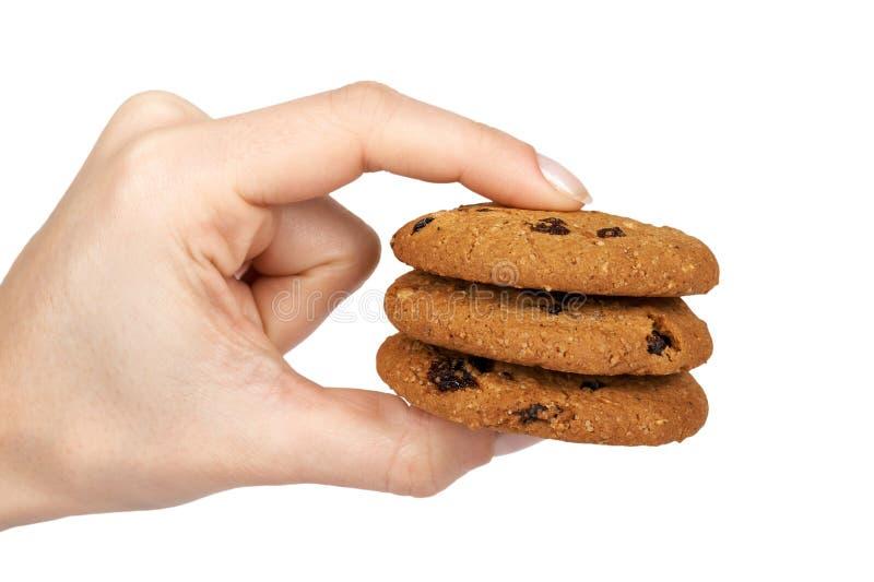 家做了oragnic巧克力曲奇饼用的葡萄干和手中的南瓜籽 背景查出的白色 免版税库存图片