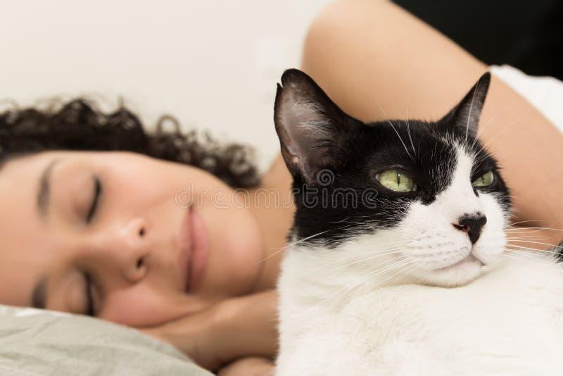家养的黑白睡觉在背景中的猫和女性所有者 宁静,和平的概念 免版税库存图片