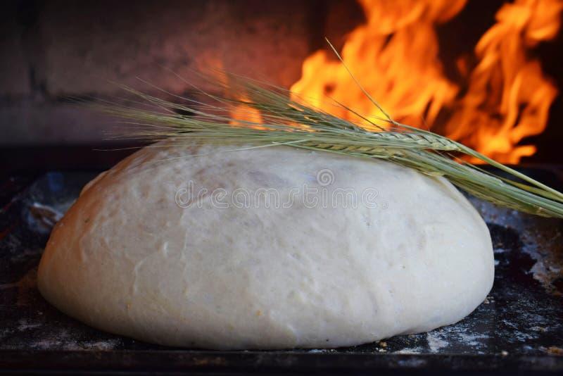 家制面包的准备在烤箱的 库存图片