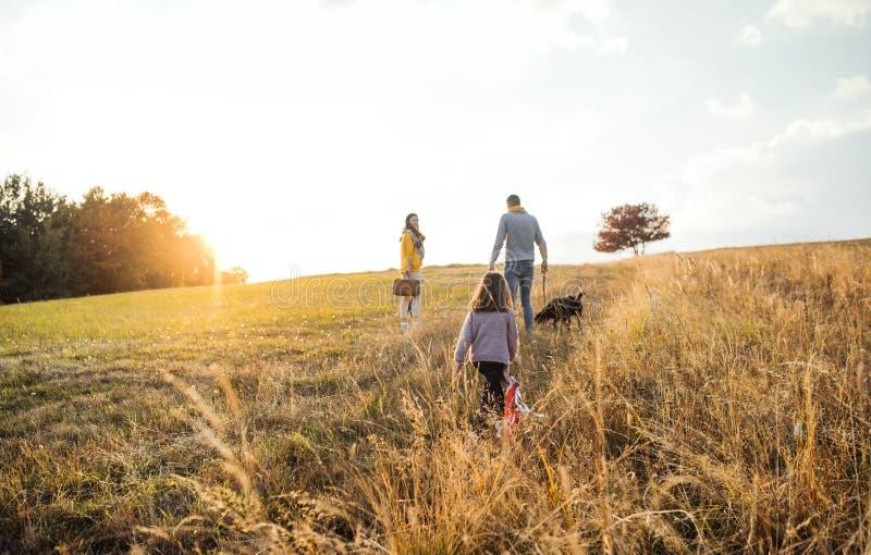 家庭一个背面图与孩子和一条狗的在秋天自然的步行在日落 免版税库存图片