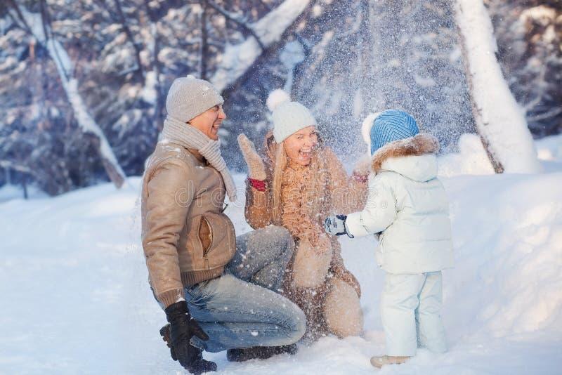 家庭乐趣在一个冬天 库存图片