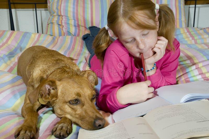 家庭作业做 库存照片
