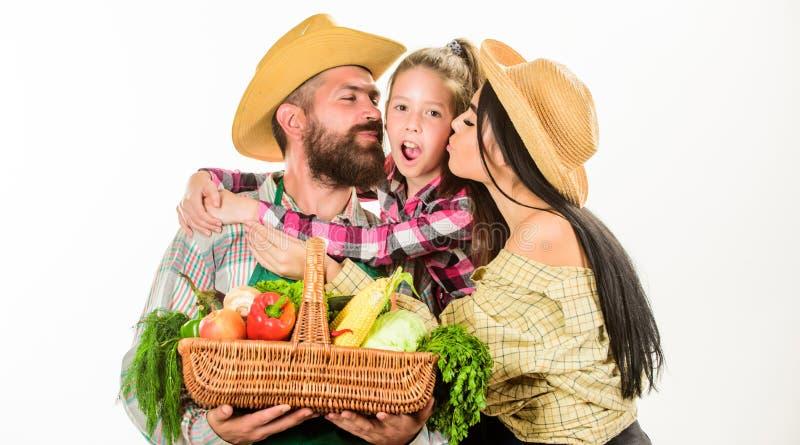 家庭农厂概念 家庭农夫拥抱举行篮子秋天收获家庭花匠篮子收获被隔绝的白色 图库摄影