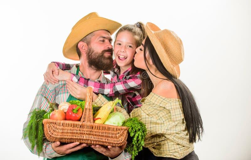 家庭农夫拥抱举行篮子秋天收获家庭花匠篮子收获白色背景 家庭从事园艺 免版税图库摄影