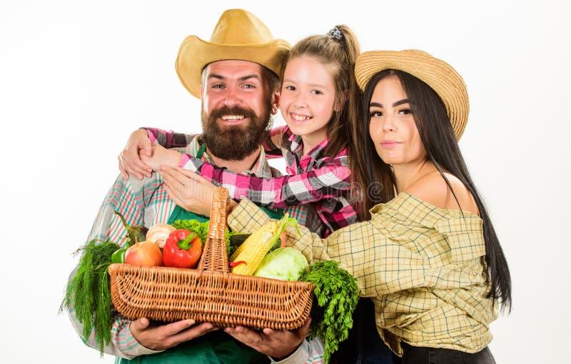 家庭农夫拥抱举行篮子秋天收获家庭花匠篮子收获被隔绝的白色背景 家庭从事园艺 免版税库存图片