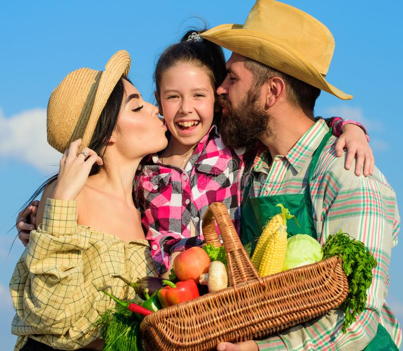 家庭农夫拥抱亲吻孩子举行篮子秋天收获家庭花匠篮子收获蓝天背景 家庭 库存照片