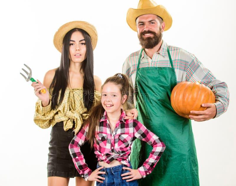 家庭农夫花匠南瓜收获白色背景 家庭土气样式农夫感到骄傲为秋天收获 免版税库存图片