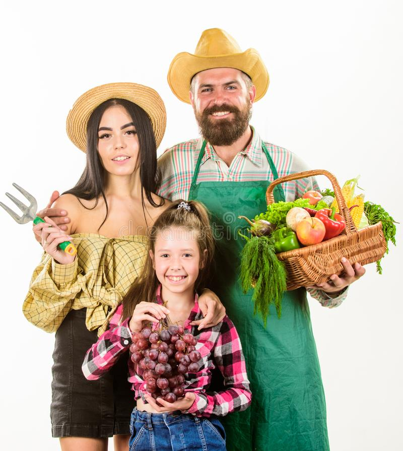 家庭农夫花匠篮子收获隔绝了白色背景 父母和女儿农夫庆祝收获 库存图片