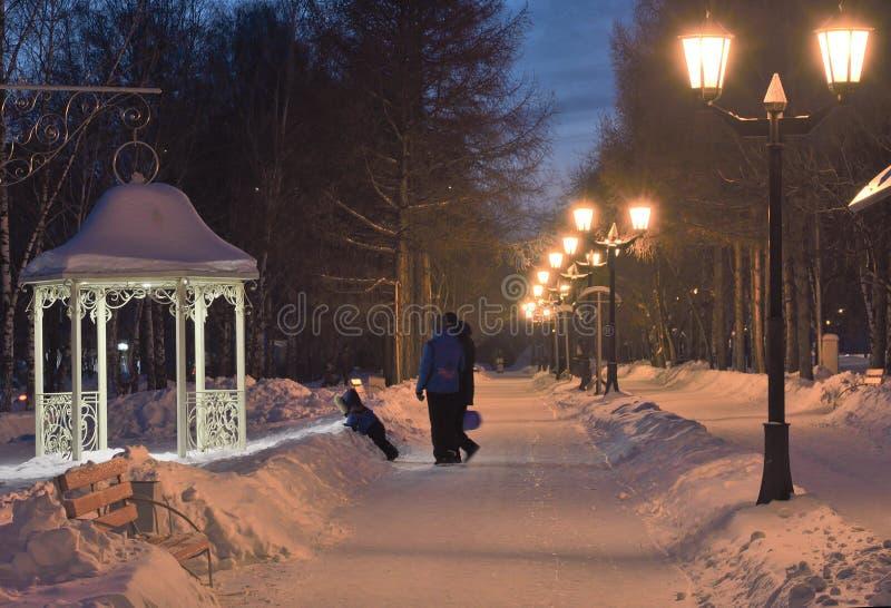 家庭在平衡的公园在冬天 免版税库存图片
