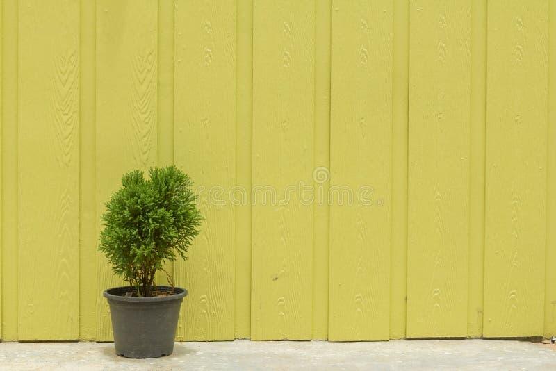 家庭墙壁 免版税库存图片