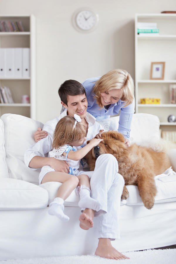家庭宠物 库存图片