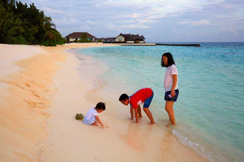 家庭度假, Vittaveli海岛,马尔代夫 库存图片