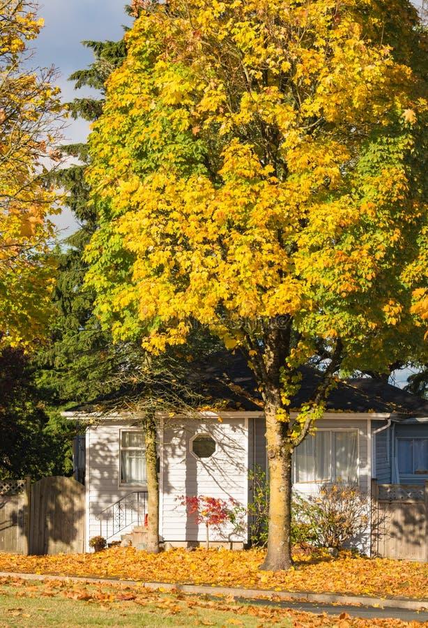 家庭房子和五颜六色的树在秋天 图库摄影